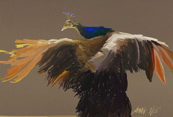 peacock-7-15
