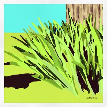April 27 (#116): Draw something green App:ProCreate Iris sprouting along the barnyard fence...a full dose of spring and so many shades of green... #everydaydrawingchallenge #procreate