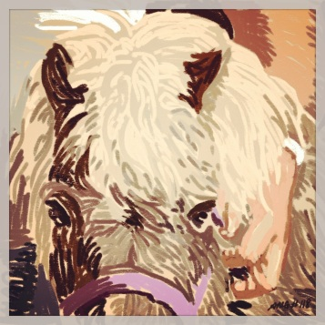 April 29 (#118): Draw some hair App: ProCreate This is the tousled mane of our miniature horse, Gidget, from a photo I took yesterday... #everydaydrawingchallenge #procreate