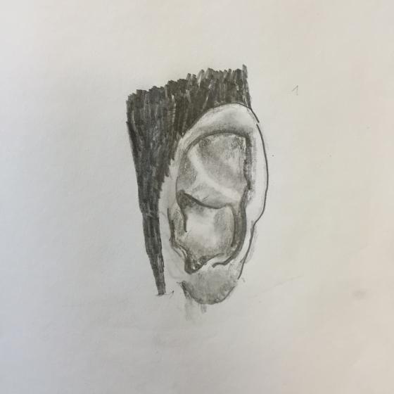 Warm-up: Draw an ear