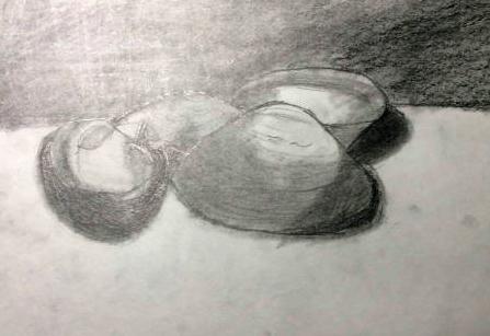 Astrid Lee/Shell Sketch/Ebony Pencil