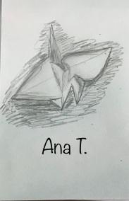 Ana T