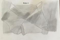 Brady U