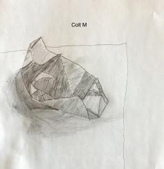 Colt M