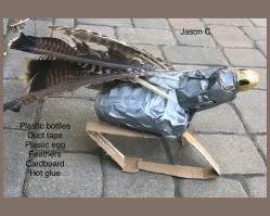 Jason C