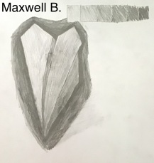 Maxwell B