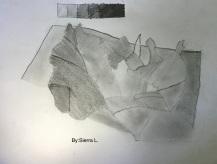 Sierra L